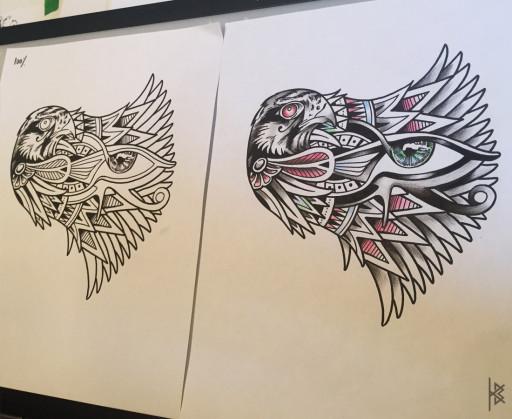 Falcon Illustrations