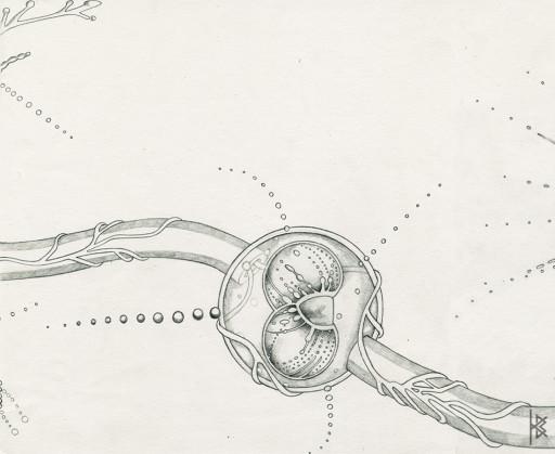 KB. ''Hatch'' Pencil on Paper, 6'x8'. 2007