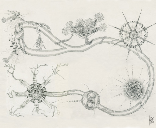 Ecclesia Drawings All