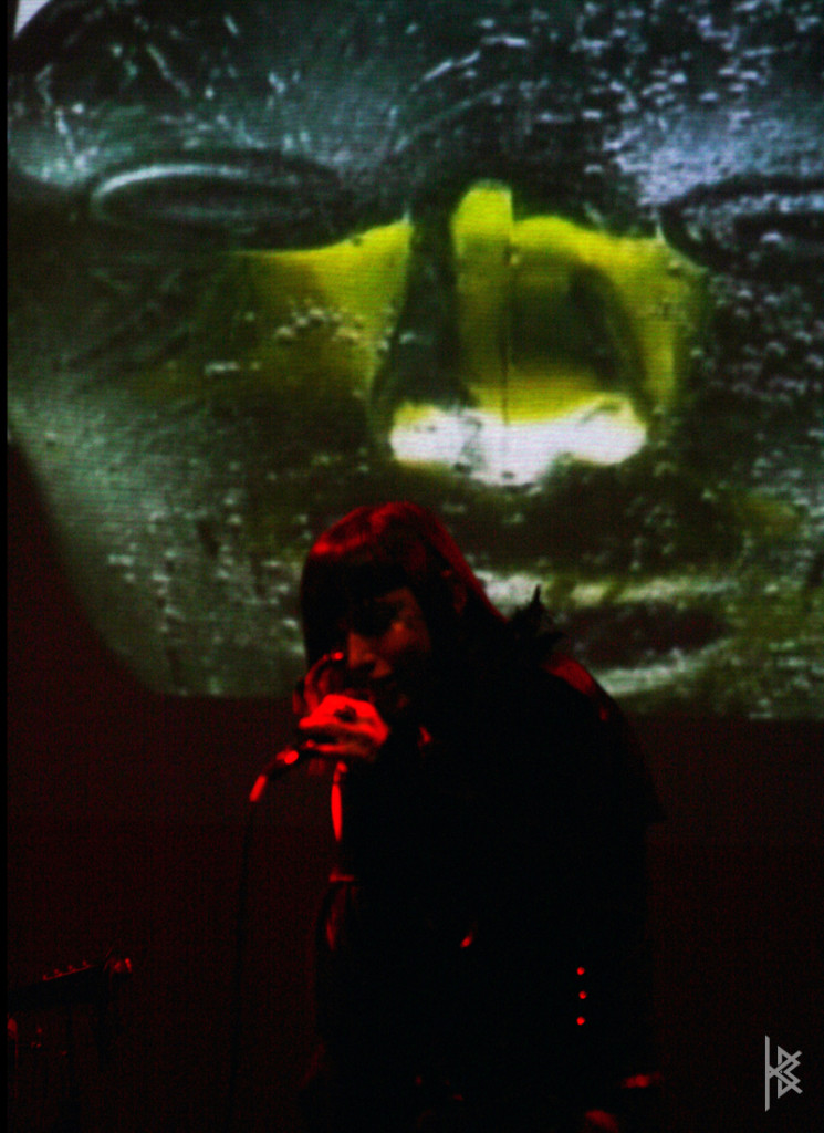''In a Crisis Visual'', Montreal Jazz Festival, 2007.